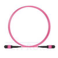 Bild von 1m (3ft) MTP Trunk Cable Female 12 Fibers Type B LSZH OM4 (OM3) 50/125 Multimode Elite, Magenta