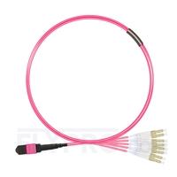 Picture of 1m (3ft) MTP Female to 4 LC UPC Duplex 8 Fibers Type B Plenum (OFNP) OM4 (OM3) 50/125 Multimode Elite Breakout Cable, Magenta