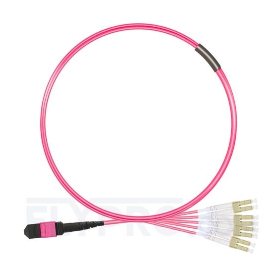 صورة 1M (3ft) MTP أنثى إلى 4 LC UPC Duplex 8 Fibers Type B Plenum (OFNP) OM4 (OM3) 50/125 Multiplode Elite Breakout Cable، Magenta
