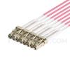 صورة 2m (7ft) MTP Female to 4 LC UPC Duplex 8 Fibers Type B Plenum (OFNP) OM4 (OM3) 50/125 Multiplode Elite Breakout Cable، Magenta