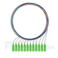 Bild von LWL-Pigtail SC, 12 Fasern SC APC, OS2 Singlemode farbcodiert - nicht ummantelt 1m (3ft)